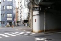 080329_ナツメグ.JPG